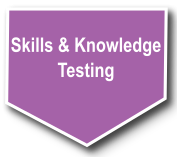 Skills knowledge testing